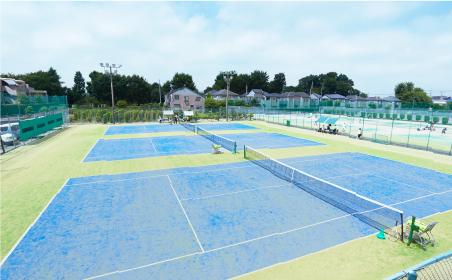 ひまわり テニス クラブ